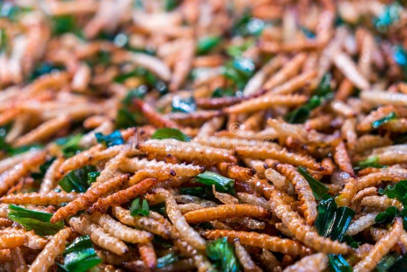 Fried Bug délicieux, fuscidentalis en bambou d'Omphisu de chenille photographie stock libre de droits