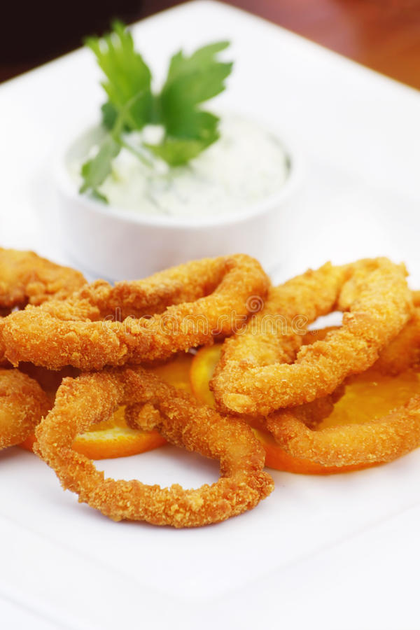 Fried calamari on a white plate royalty free stock image