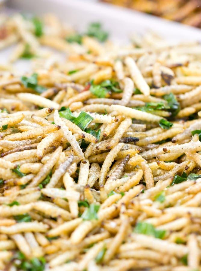 Fried Caterpillars Worms profundo. imagens de stock royalty free