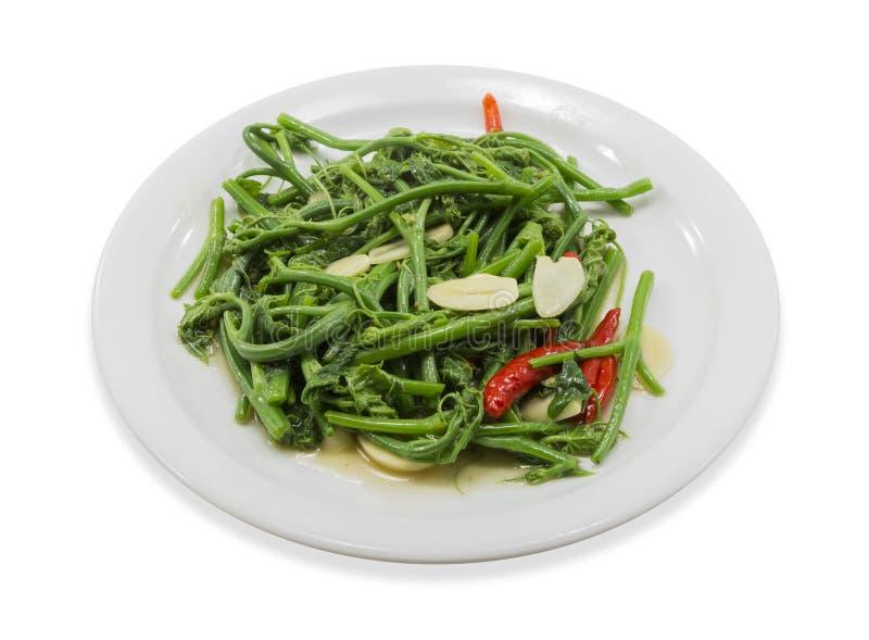 Fried Chayote-groente royalty-vrije stock foto
