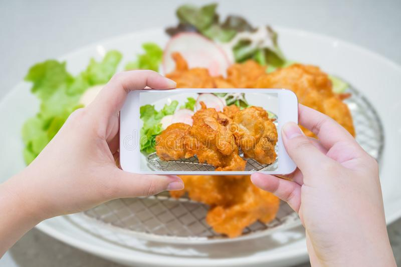 Fried chicken Japanese style royalty free stock image
