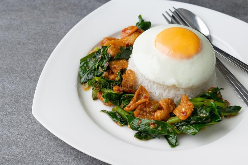 Fried Chinese kale with crispy skin chicken in oyster sauce and chilli in the white dish, fried egg, rice stock photos