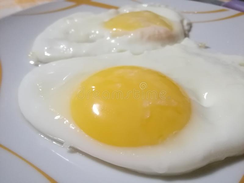 Fried Eggs photographie stock