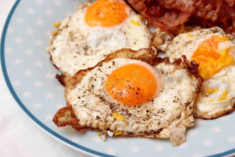 Fried Eggs stockfoto