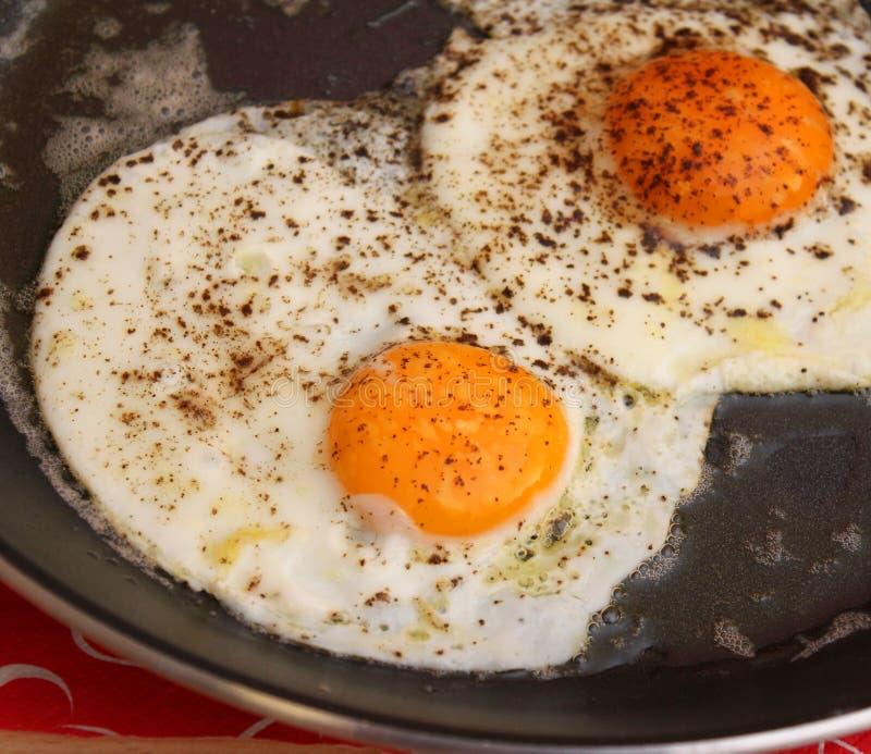 Fried Eggs stockfotografie