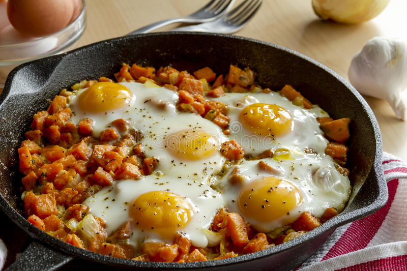 Fried Eggs and Sweet Potato Hash royalty free stock photo