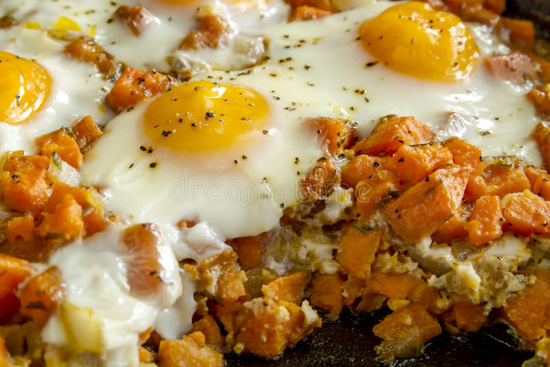 Fried Eggs and Sweet Potato Hash royalty free stock photography