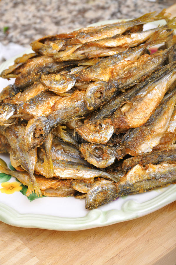 Download Fried fish stock photo. Image of cold, fillet, baked - 23523250