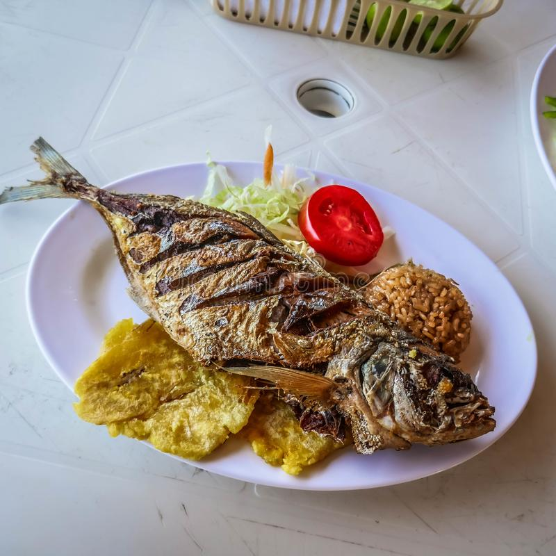 Fried fish with coconut rice, caribbean food royalty free stock photos