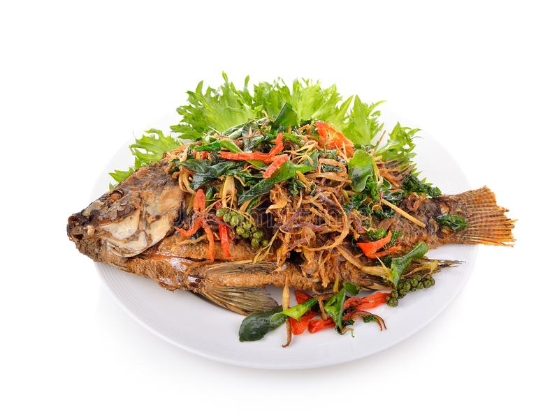 Fried fish with herbs. on white plate stock photo