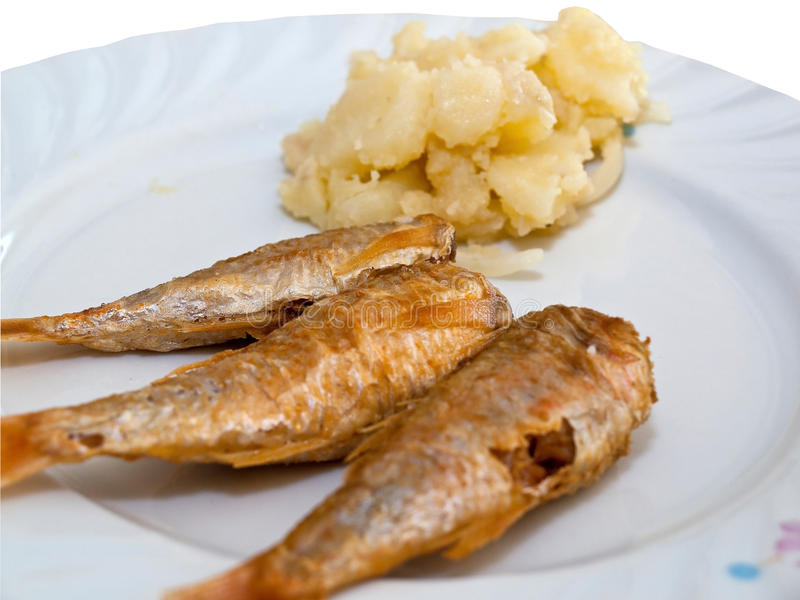 Download Fried fish with potatoes stock image. Image of dinner - 18830149