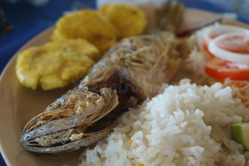 Fried fish with rice and banana. Fried fish dish with white rice and platano in tostones royalty free stock photography