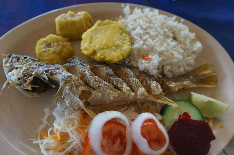 Fried fish with rice and banana. Fried fish dish with white rice and platano in tostones royalty free stock images