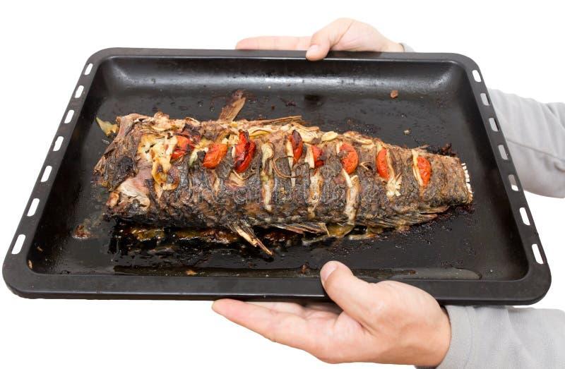 Fried Fish sur une plaque de cuisson photos libres de droits