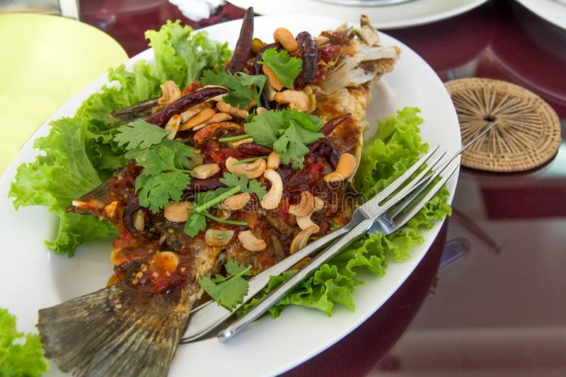 Fried fish topped with sweet and sour sauce on dish,Thai food,Selective focus. Eating, tropical, meat, chili, appetizer, grilled, vegetable, vegetables royalty free stock photography