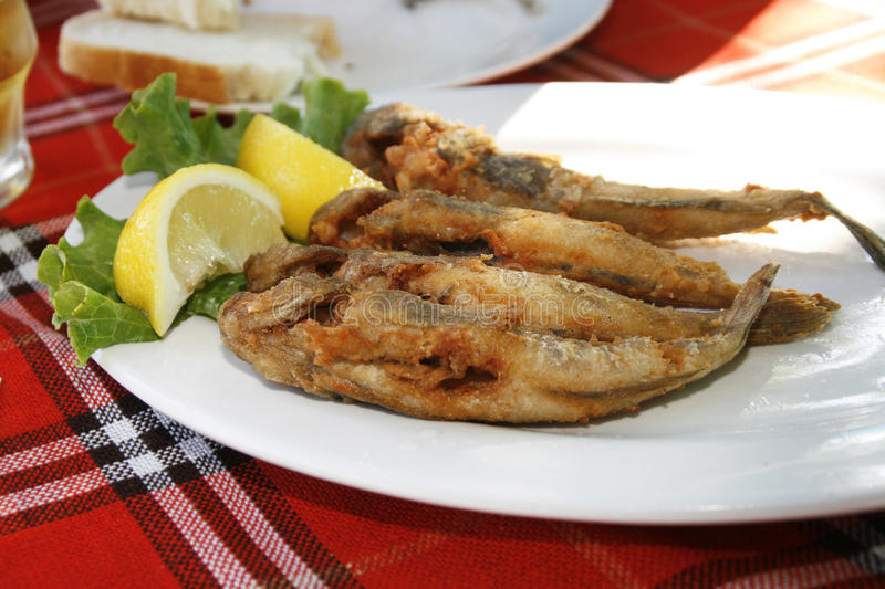 Fried goby fish. With lemon in Bulgarian restaurant stock image