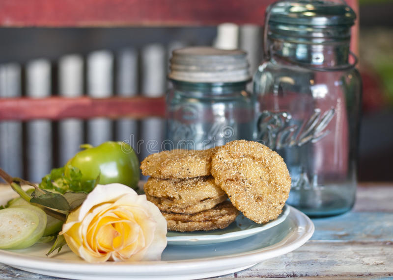 Fried Green Tomatoes stock fotografie
