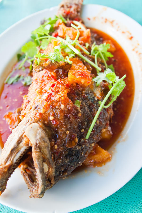 Fried grouper fish with sauce,sour and spicy stock photography