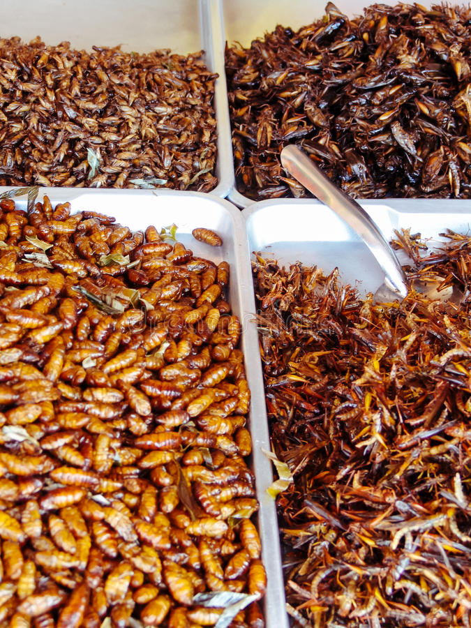 Fried insects on the street food stalls of Asia stock photos