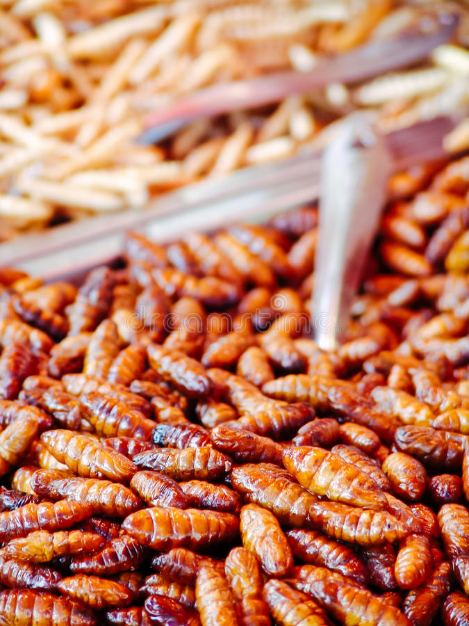 Fried insects on the street food stalls of Asia stock images