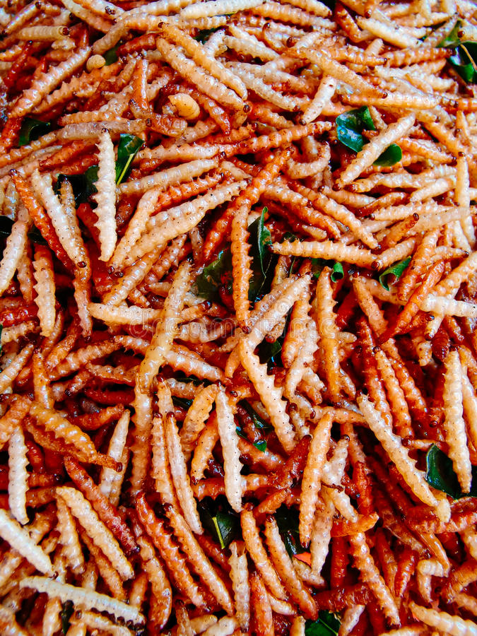 Fried insects on the street food stalls of Asia royalty free stock image