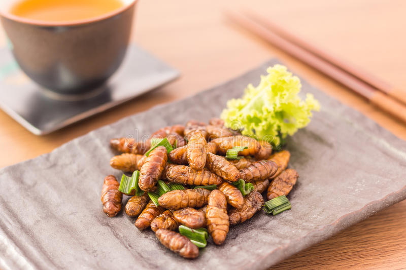 Download Fried insects stock image. Image of meal, bees, bugs - 80174295
