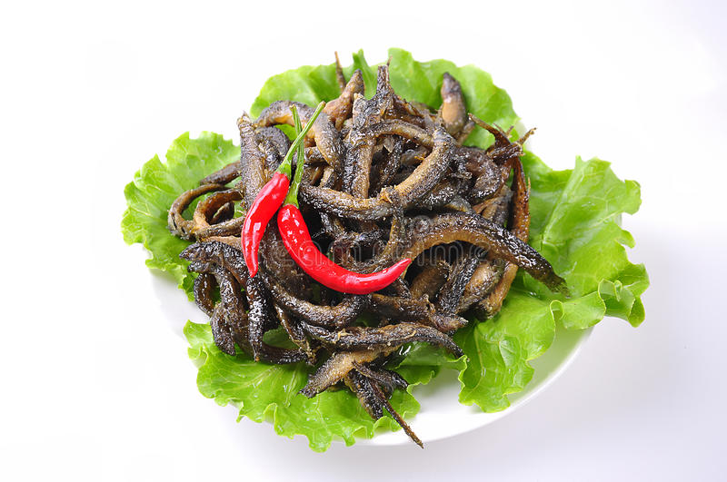 Fried loach. Chinese food,Pepper loach stock image