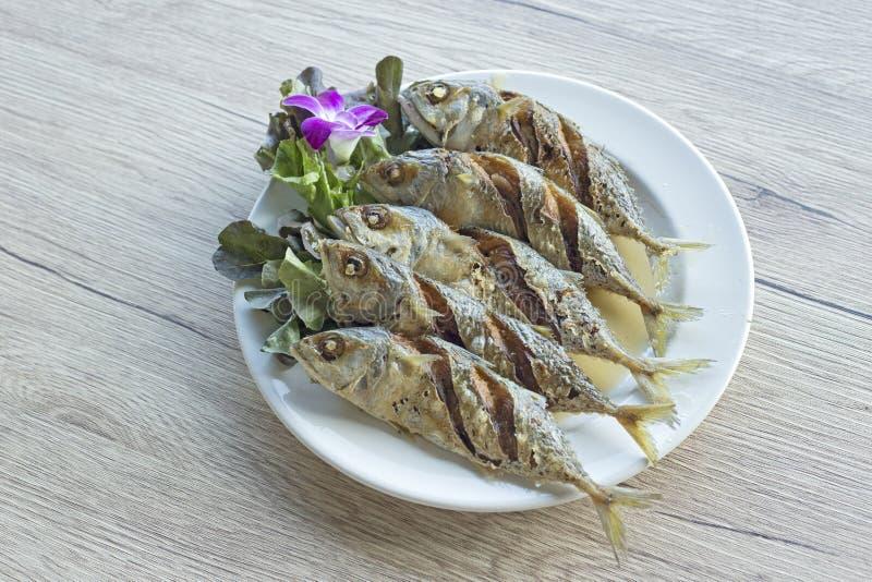 Fried Mackerel Fish con la salsa di pesce fotografia stock libera da diritti