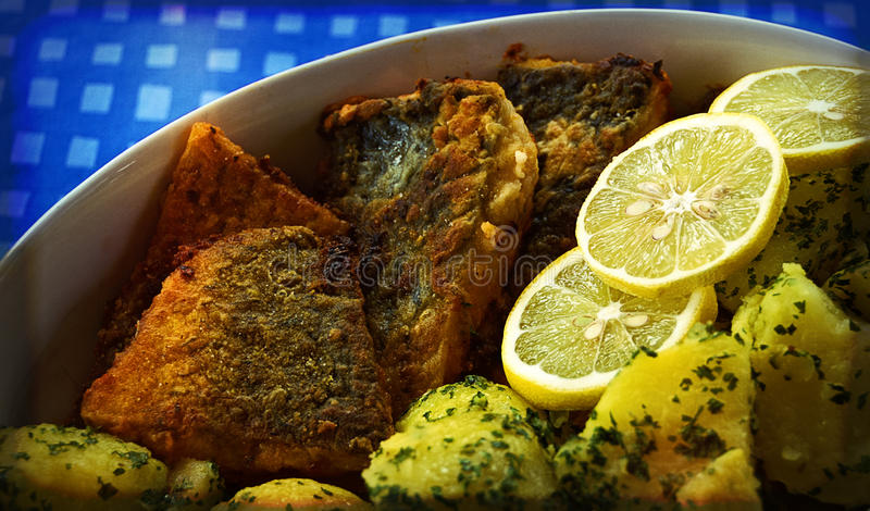 Fried pieces of carp royalty free stock photo