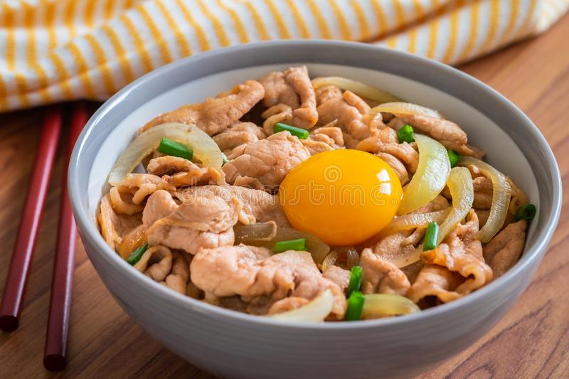 Fried pork with egg and rice in bowl. Japanese food style, Donburi stock images
