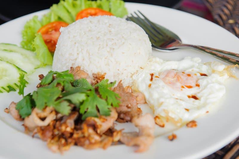 Fried Pork med vitlök och ägg royaltyfri bild