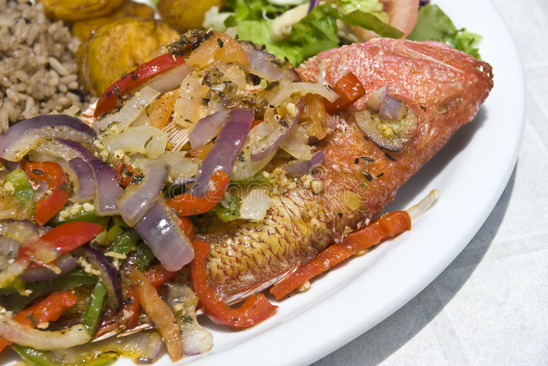 Fried Red Snapper stock photography