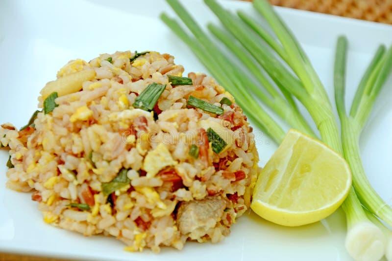 Fried Rice. arkivbild