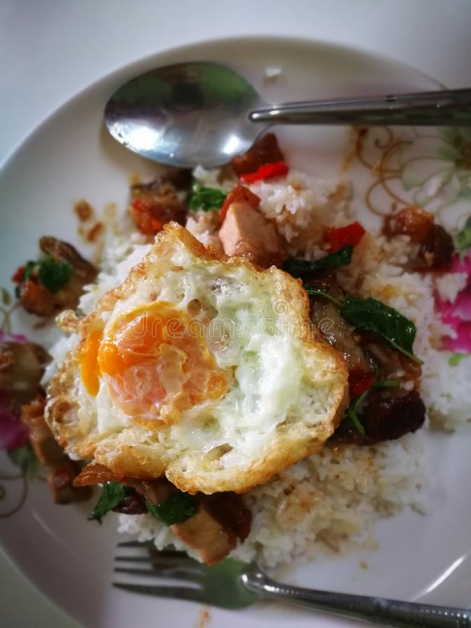 Fried Rice with Basil fried crispy Pork topping with Egg Thailand street food royalty free stock photo