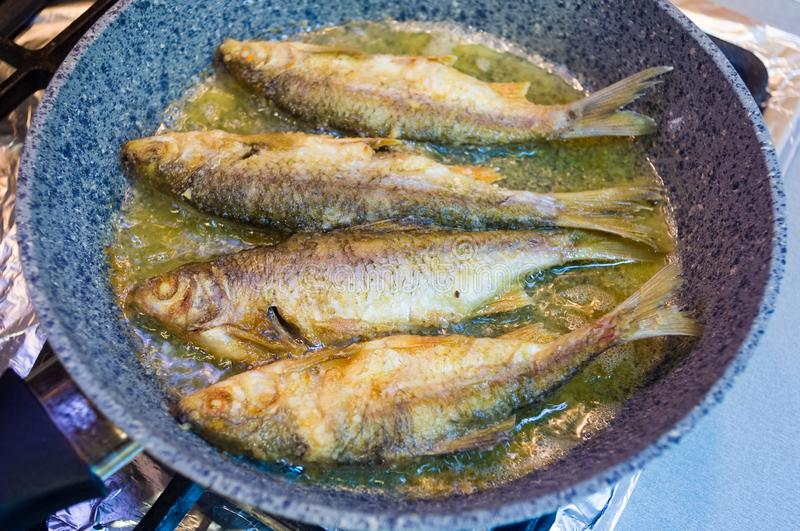 Fried river fish with crispy crust in a frying pan, homemade dish, close up. Fried river fish with crispy crust in a frying pan, homemade dish royalty free stock photo