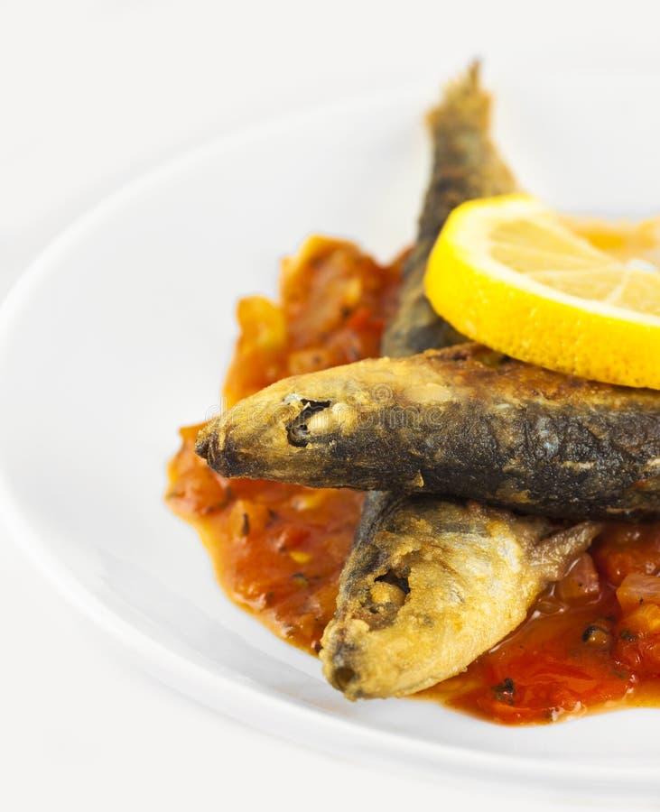 Fried sardines stock image