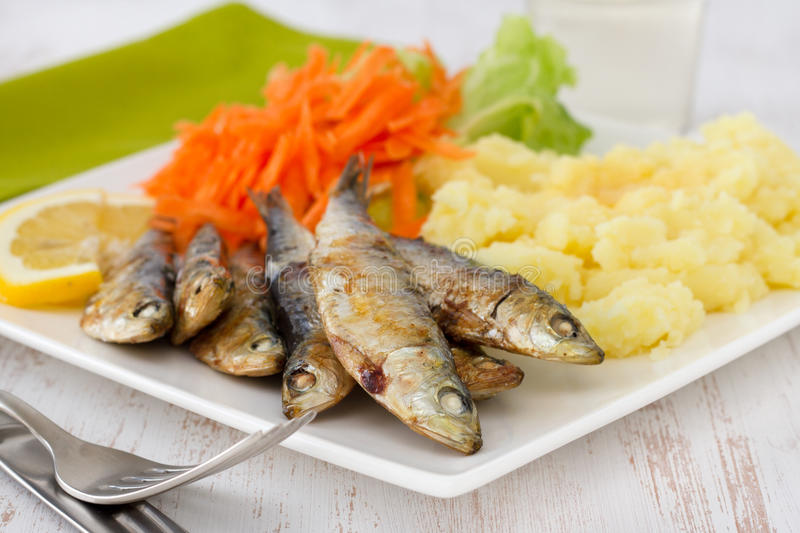 Fried sardines with salad and mashed potato royalty free stock images