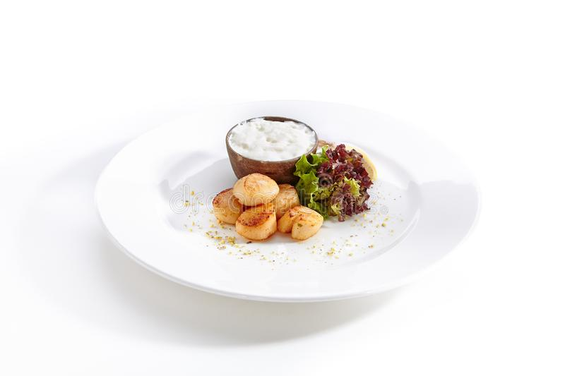 Fried Sea Scallop with White Sauce Isolated. Fried Sea Scallop with White Sauce on Elegant Restaurant Plate Isolated on White Background. Gourmet Clams Meat with stock photo