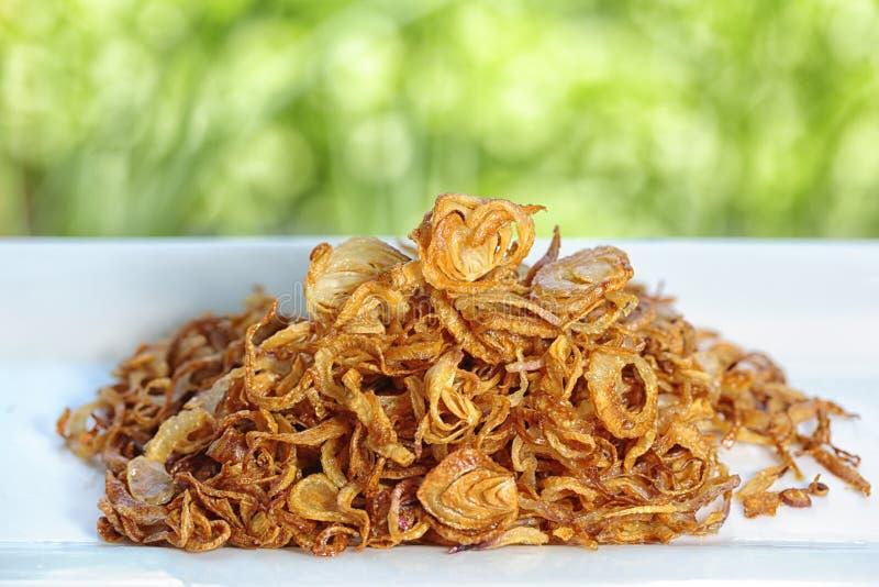 Fried Shallot stock fotografie