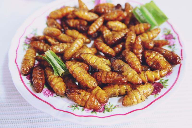 Fried silk worms bamboo insect, popular snack street food in Thailand royalty free stock photos