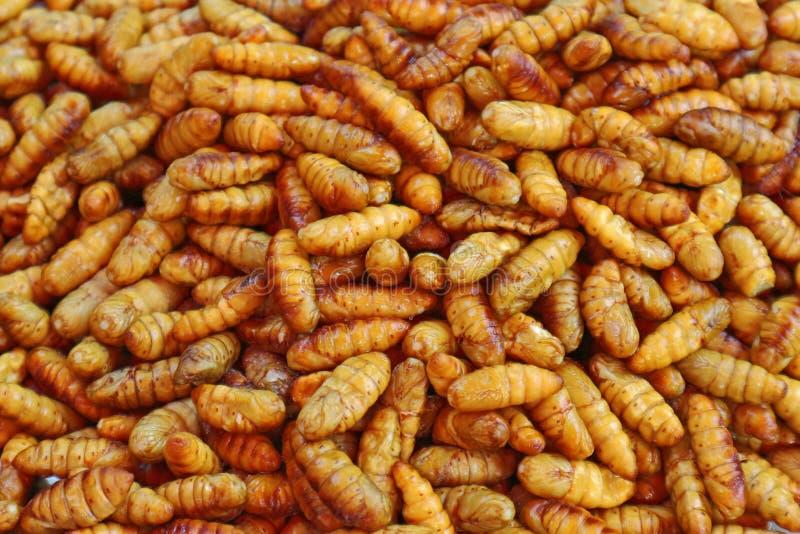 Fried Silk Worms délicieux - nourriture de rue en Thaïlande image libre de droits