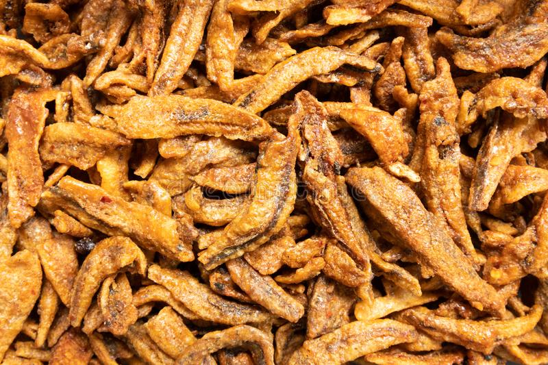 Fried small anchovy fish, thai food royalty free stock images