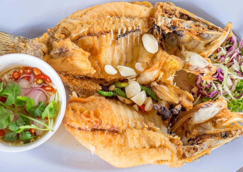 Fried Snakehead Fish with Fish Sauce stock images