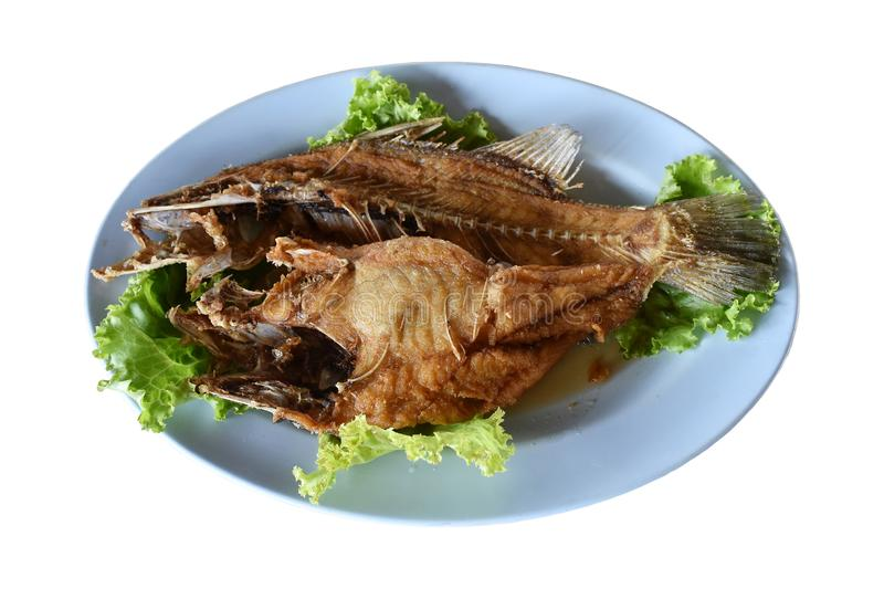 Fried snapper fish and vegetables on a white background royalty free stock photography