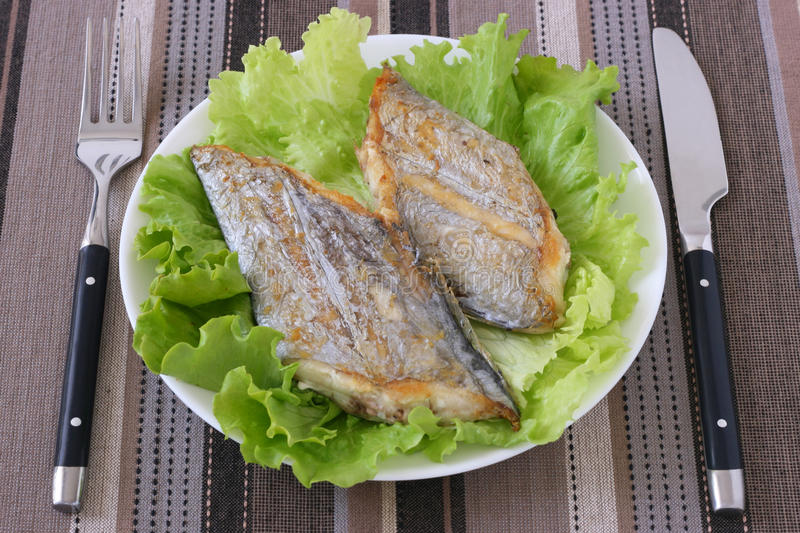 Fried swordfish on lettuce royalty free stock images