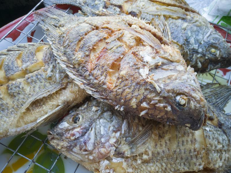 Fried Tilapia Fish a placé sur le gril images libres de droits