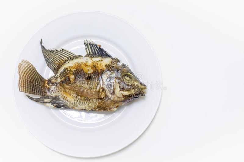 Fried tilapia in a white dish White background stock photos