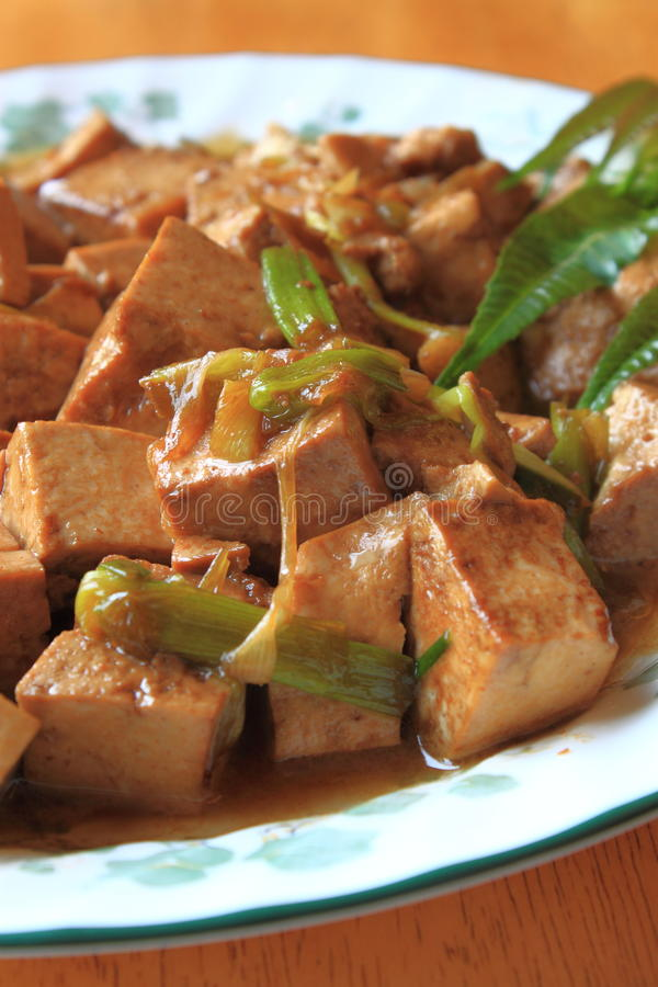 Fried Tofu Dish. With green onion and basil in plate royalty free stock photo