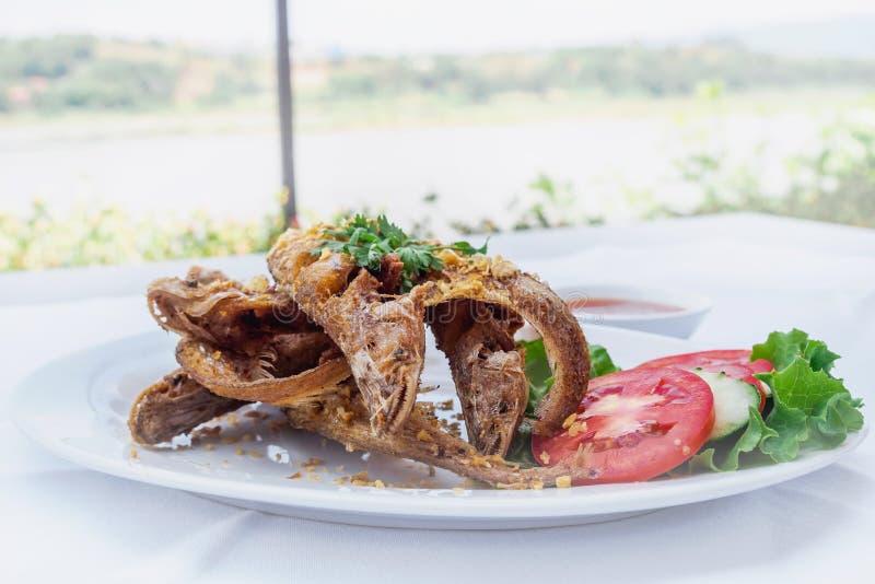 Fried whisker Sheatfish stock photography