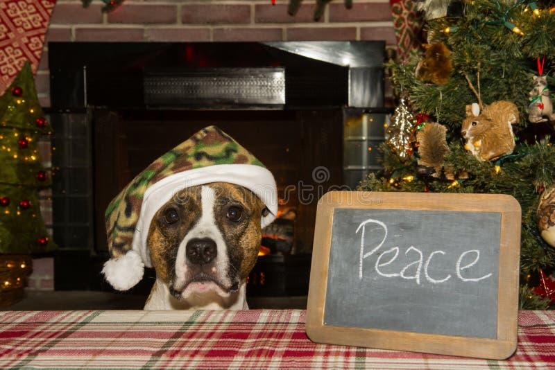 Frieden auf Erde stockbild